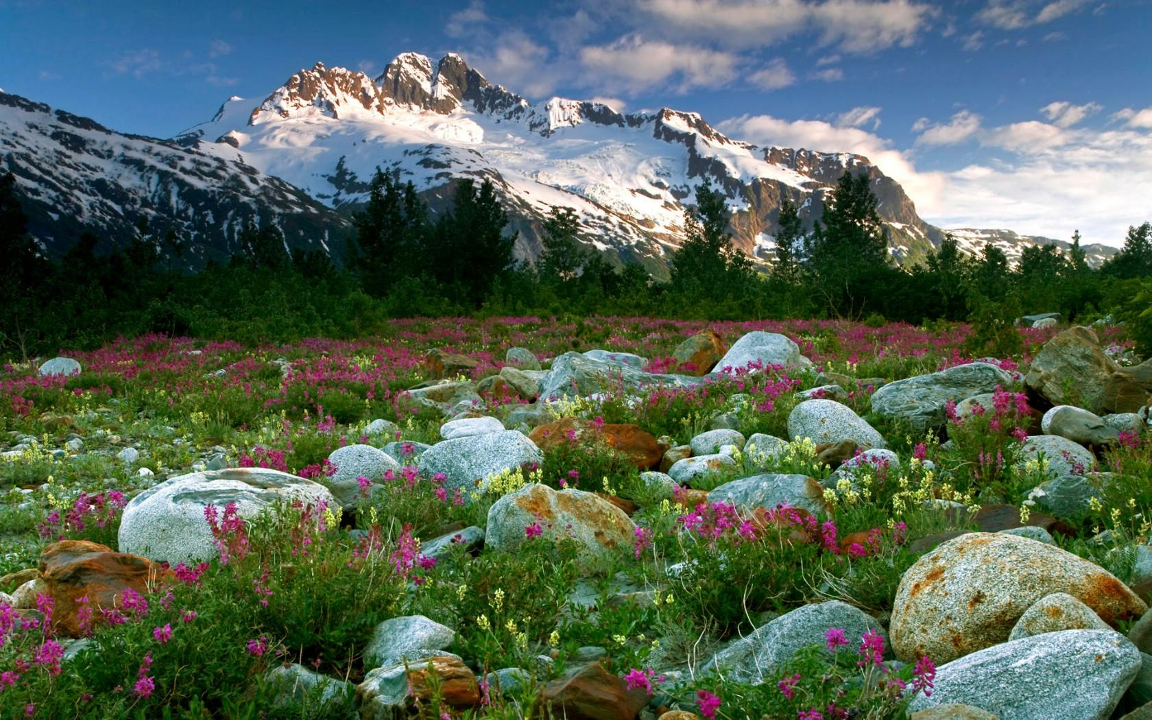 加拿大风景图片_加拿大风景介绍_加拿大风景图_山水风景卓面风景图