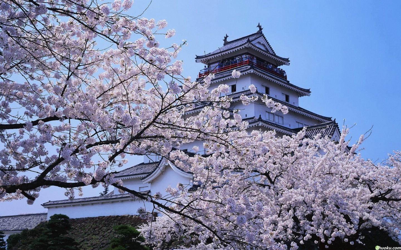 日本东京城市繁华夜景摄影高清图片
