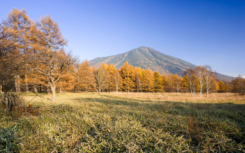 俄罗斯自然风景