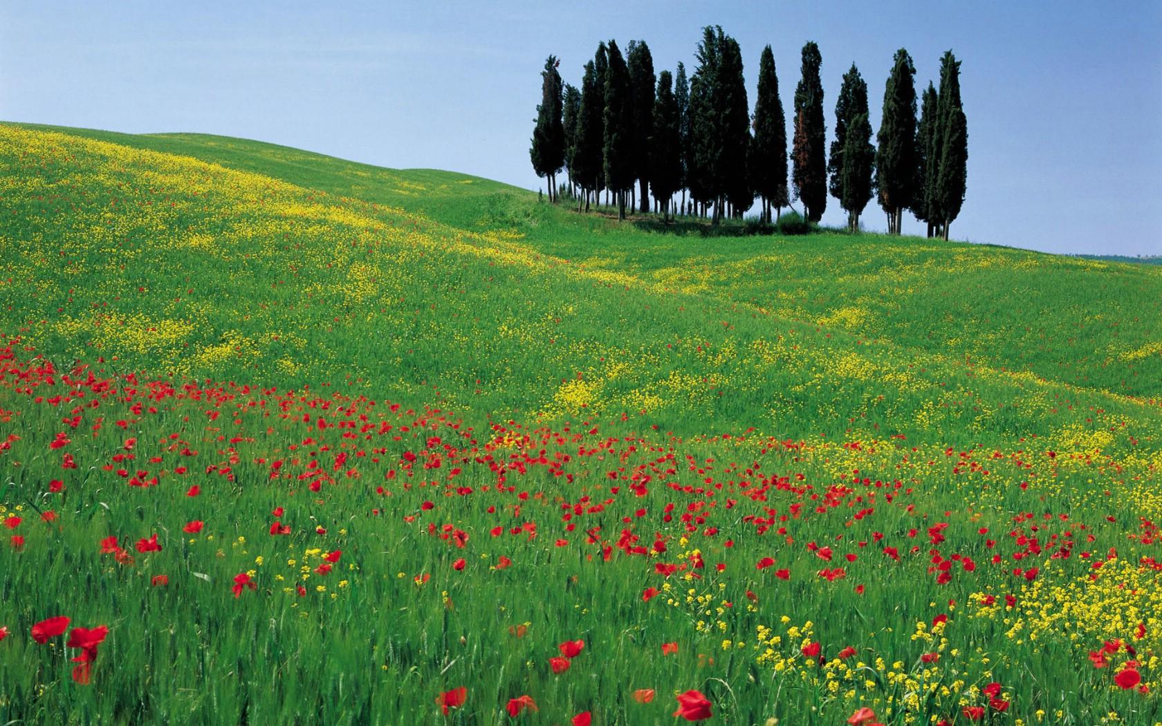 壁纸1680×1050意大利风光风景高清宽屏壁纸 壁纸19壁纸