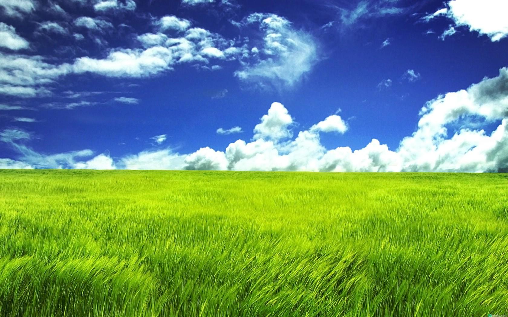 风景壁纸 壁纸下载 美  纯净蓝色大海高清护眼风景电脑桌面壁纸下载5p