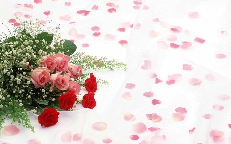 婚庆现场背景布置摄影图__图片素材_其他_摄影图库_昵图网nipic.