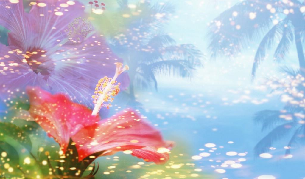 壁纸1024×600朦胧花朵柔美 宽屏壁纸 壁纸4壁纸 朦胧花朵柔美 宽屏壁壁纸图片系统壁纸系统图片素材桌面壁纸