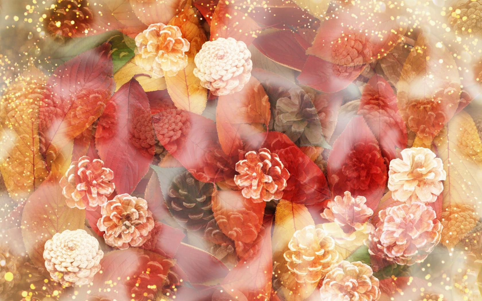 壁纸1680×1050朦胧花朵柔美 宽屏壁纸 壁纸7壁纸 朦胧花朵柔美 宽屏壁壁纸图片系统壁纸系统图片素材桌面壁纸