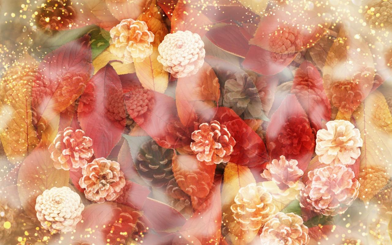 壁纸1280×800朦胧花朵柔美 宽屏壁纸 壁纸7壁纸 朦胧花朵柔美 宽屏壁壁纸图片系统壁纸系统图片素材桌面壁纸