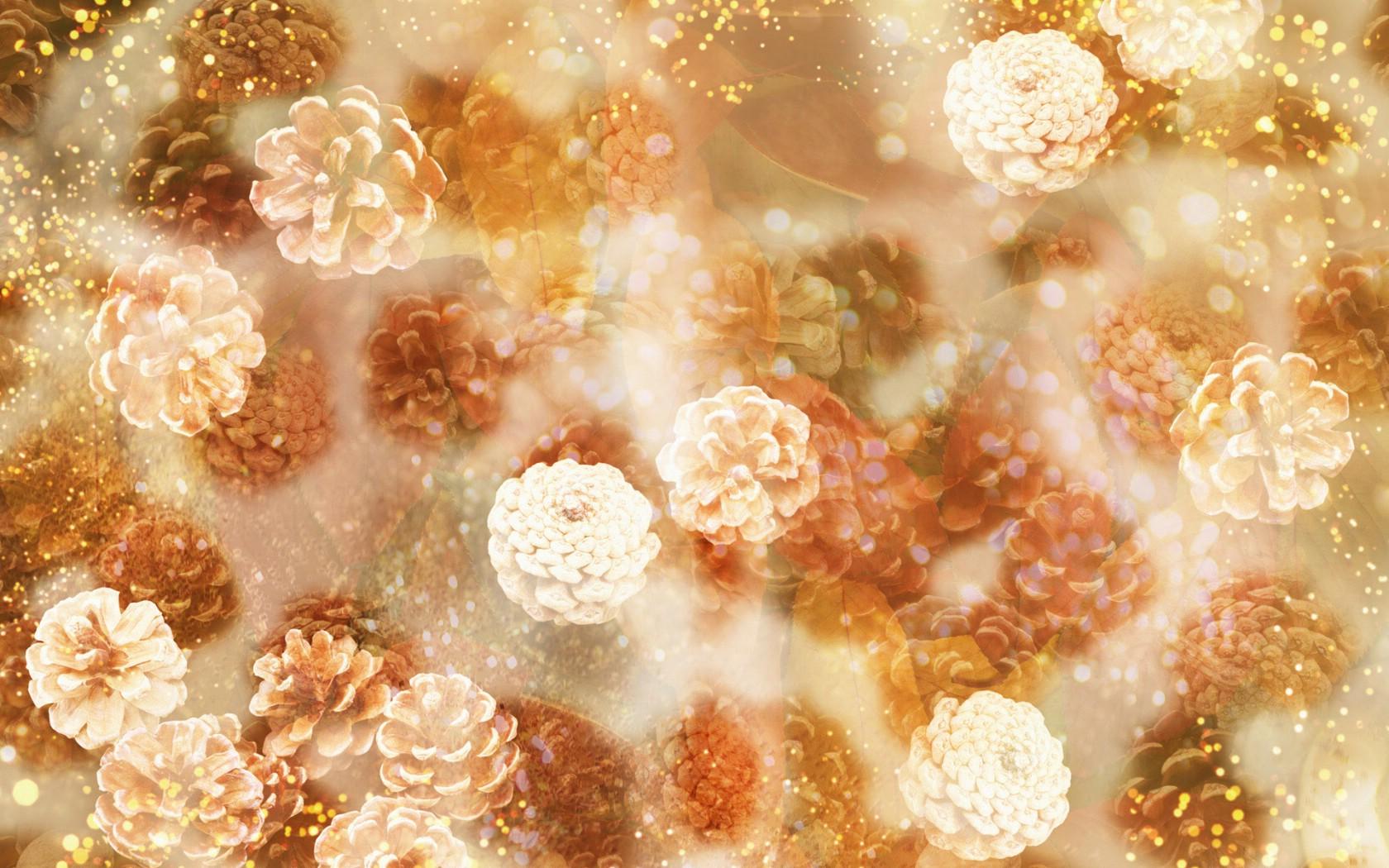 壁纸1680×1050朦胧花朵柔美 宽屏壁纸 壁纸8壁纸 朦胧花朵柔美 宽屏壁壁纸图片系统壁纸系统图片素材桌面壁纸