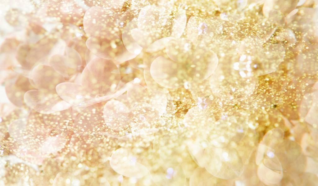 壁纸1024×600朦胧花朵柔美 宽屏壁纸 壁纸13壁纸 朦胧花朵柔美 宽屏壁壁纸图片系统壁纸系统图片素材桌面壁纸