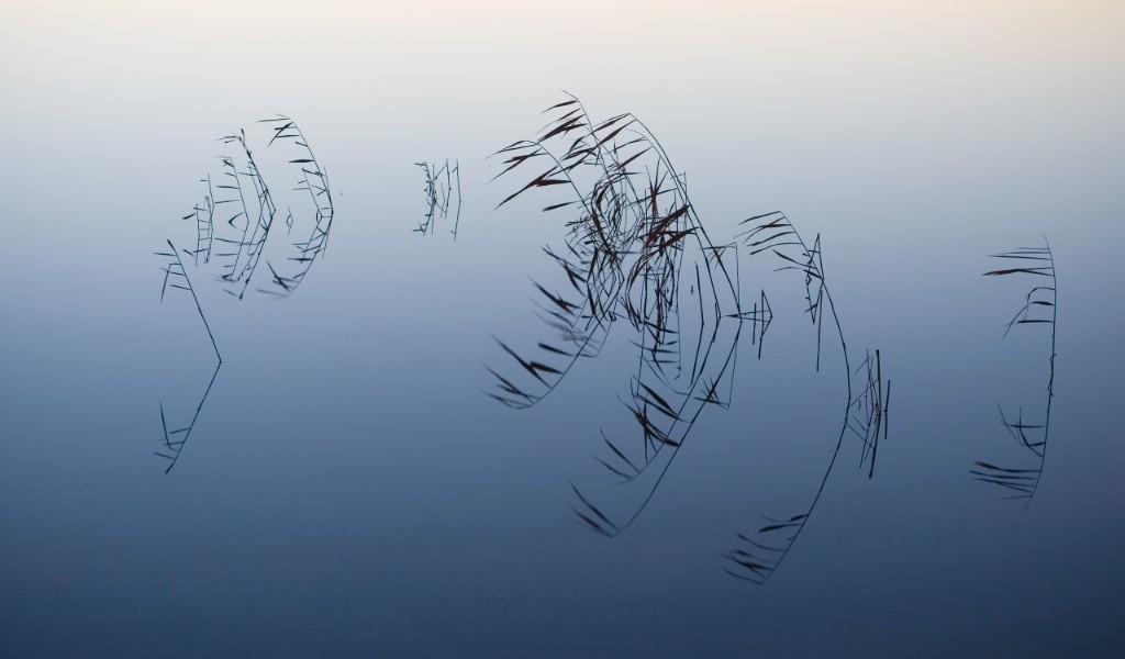 壁纸1024×600苹果2009最新系统 Snow Leopard 雪豹 全套官方宽屏壁纸 2560 1600 壁纸16壁纸 苹果2009最新系统壁纸图片系统壁纸系统图片素材桌面壁纸